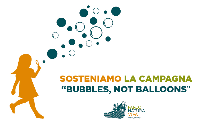 bubbles-not-balloons-campaign.jpg