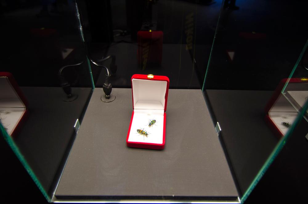 gioielli-a-6-zampe-stefano-dal-secco-3.jpg