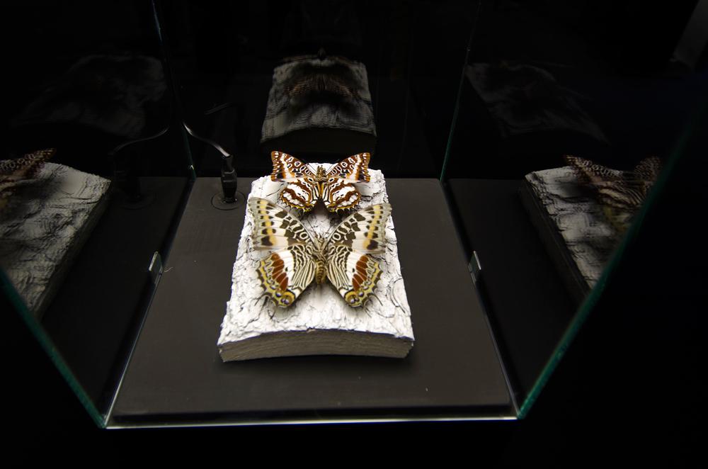gioielli-a-6-zampe-stefano-dal-secco-30.jpg
