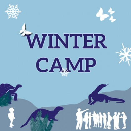 Winter Camp 30 dicembre