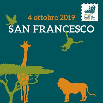 Giovedì 4 - San Francesco