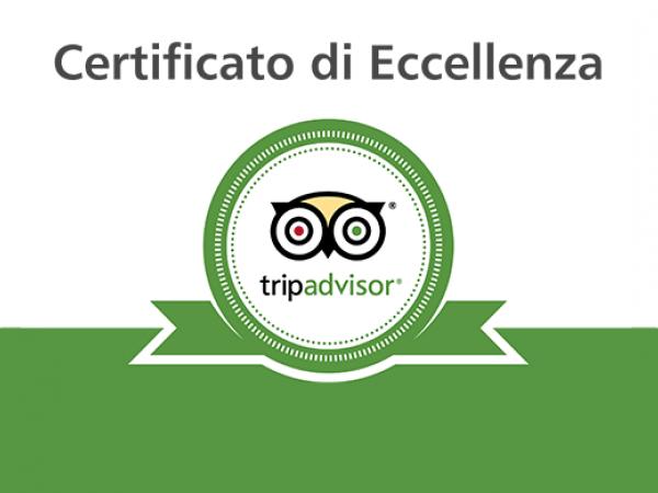 TripAdvisor Certificate of Excellence!