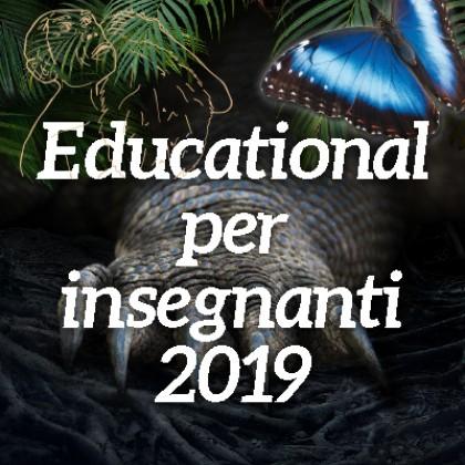 Educational per insegnanti 2019