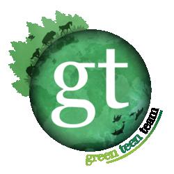 Green Teen Team Members Day
