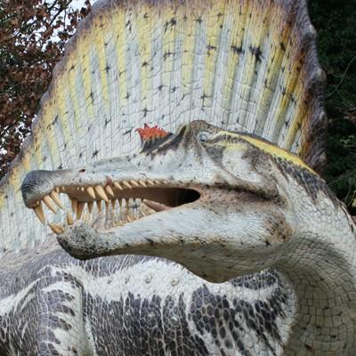 Domenica al Parco - i dinosauri