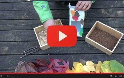 Costruisci le mangiatoie per gli uccellini - Episodio 3 - Preparazione