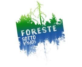 """Deforestazione, Telmo Pievani: """"estingue la memoria evolutiva dell'uomo"""""""