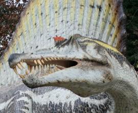 Dinosauri e altri animali del passato