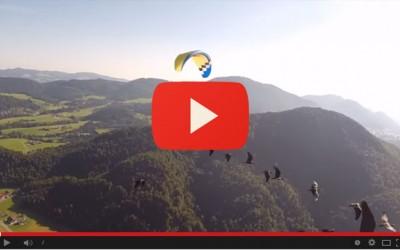 Terza migrazione degli Ibis Eremita